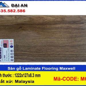 san-go-cong-nghiep-maxwell-m64-o-hai-phong