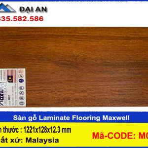 san-go-maxwell-07-o-hai-phong