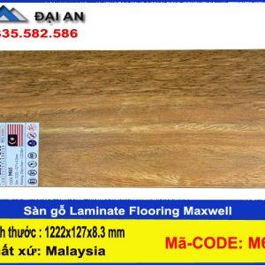san-go-maxwell-m65-o-hai-phong