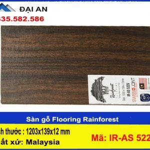 san-go-rain-forest-ir-as-522-v-o-hai-phong