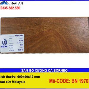 san-go-xuong--ca-borneo-ma-BN-19703-o-hai-phong